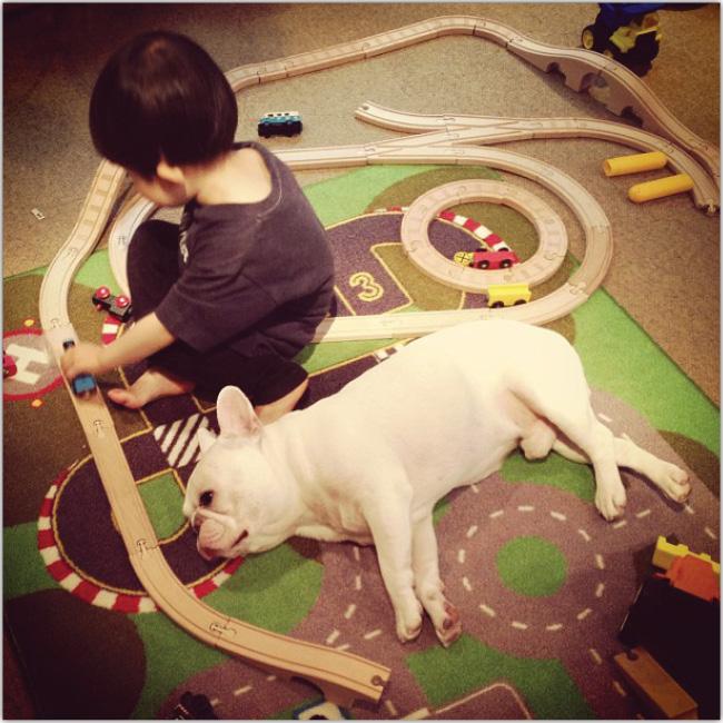 犬と子供が可愛いInstagramフォト