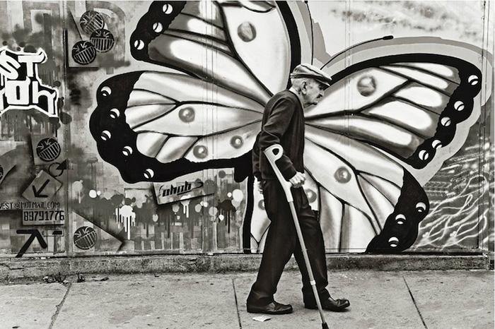 おじいさんと蝶々