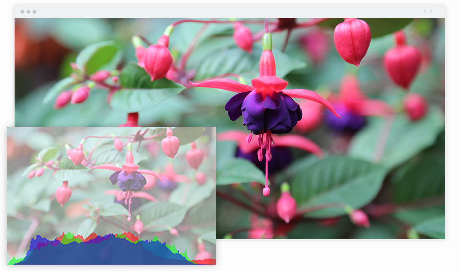写真家におススメの拡張機能のimage histogramのスクリーンショット