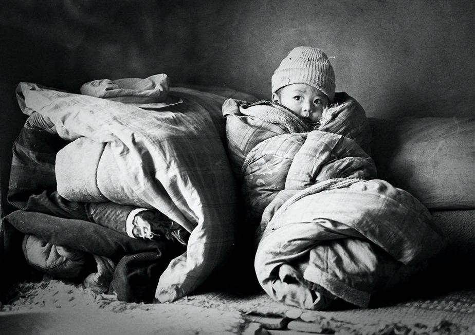 NORIYOSHI SHIBATA Photography