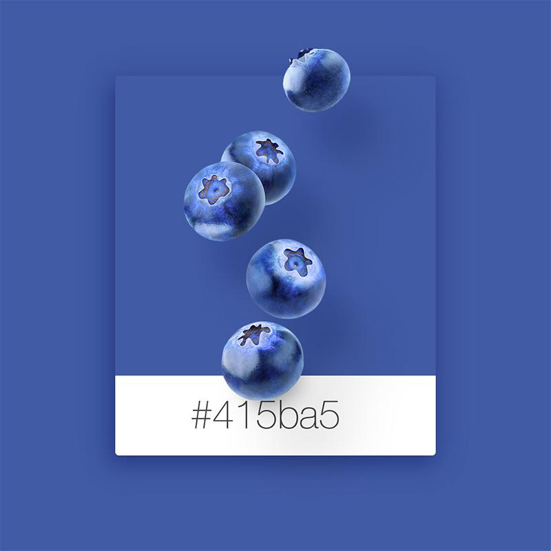 No.-2-ブルーベリー