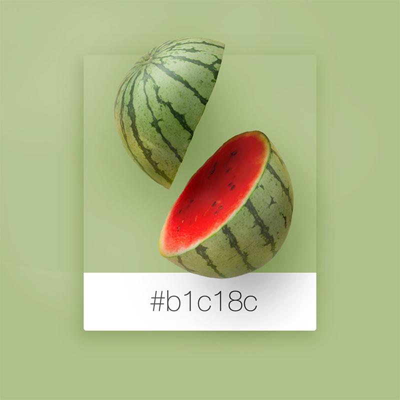 No.13-スイカ