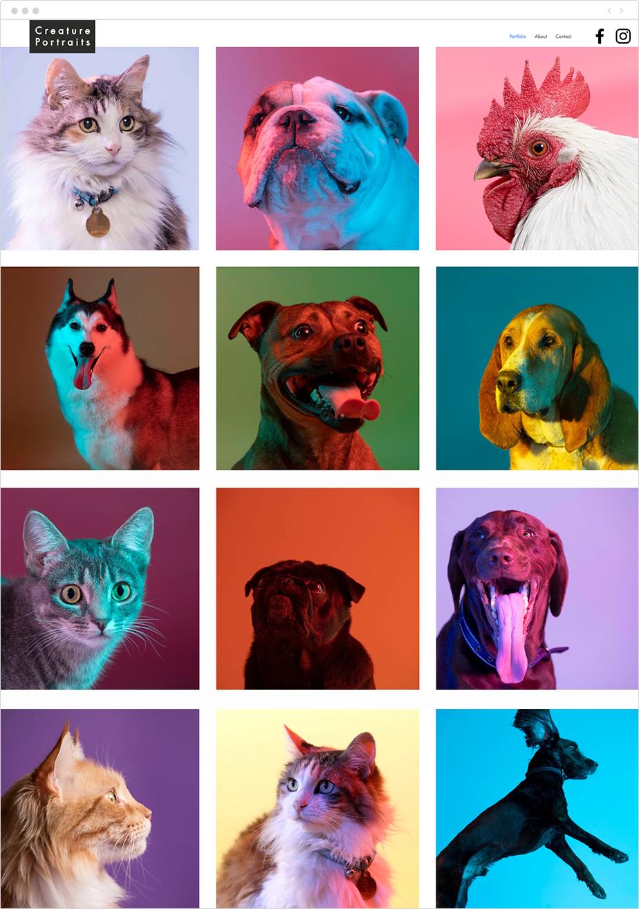 Creature Portraits