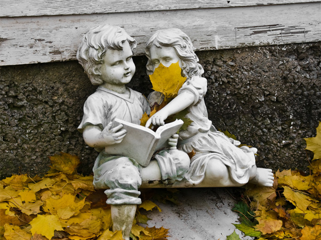 落ち葉がキュートな写真