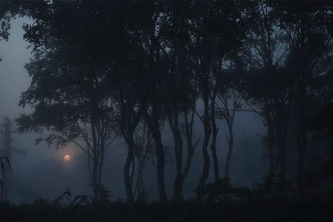 naturephotoguidejapan